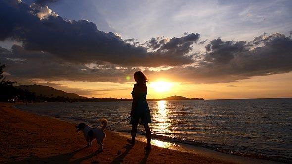 donna con cane al tramonto