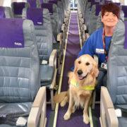 Le 10 regole d'oro per volare col tuo cane