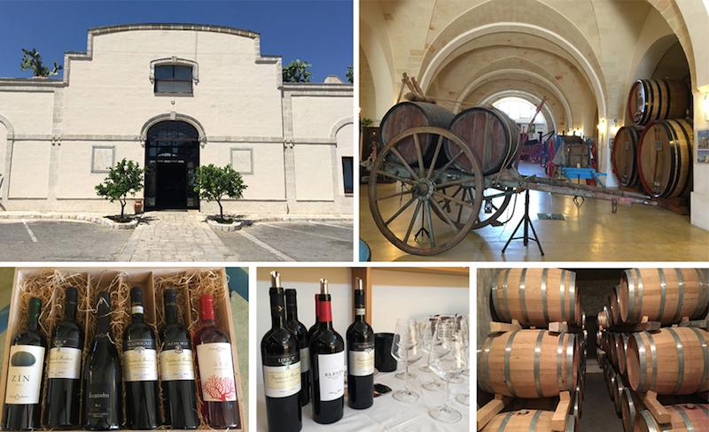 consorzio vini del primitivo manduria