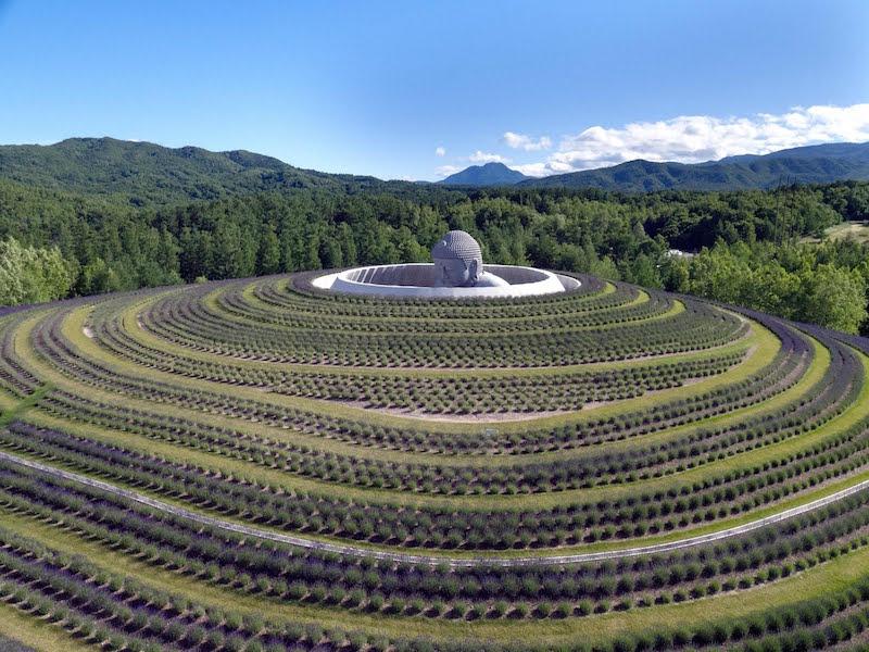 sapporo collina buddha