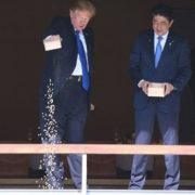 Un'altra tegola su Trump: ha ingozzato le carpe giapponesi