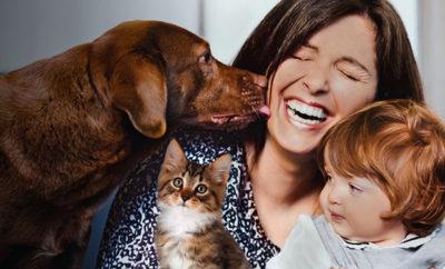 cane gatto ap