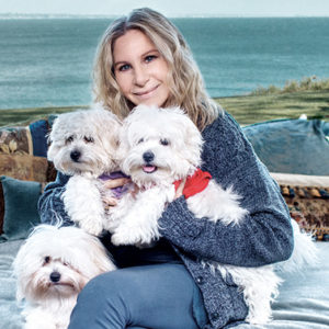 """Barbra Streisand confessa: """"Ho clonato la mia amata cagnetta"""""""