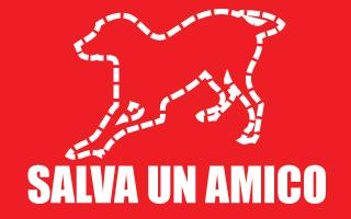 salvaunamico_300x200