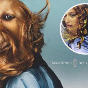Se un cane si veste da Madonna e diventa una pop star come lei...