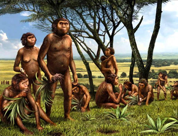dieta-orario-homo-sapiens