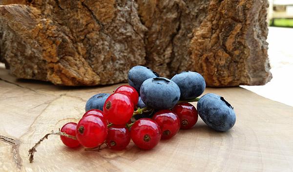 alimenti-naturli-mirtilli