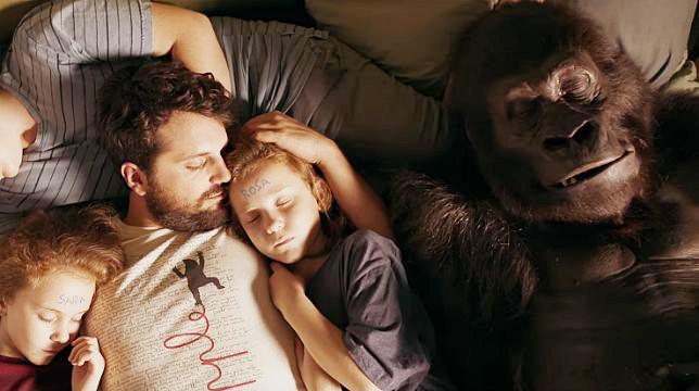 attenti al gorilla frank matano