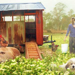 """""""La fattoria dei nostri sogni"""" è il film per chi nei sogni ci crede"""
