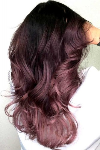 chocolate-lilac-