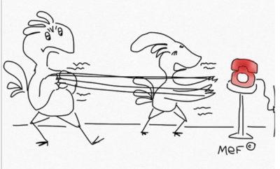 violenza domestica quarantena ap