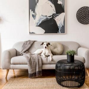 Come scegliere quadri e poster da appendere alle pareti di casa